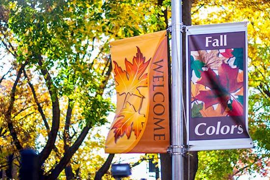 Festive Seasonal Banners